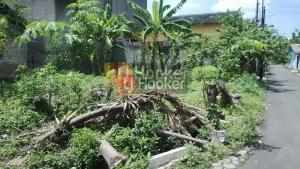 Tanah siap bangun di Sambiroto Semarang