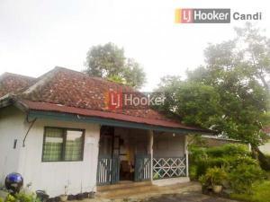 Rumah Lama di Jatingaleh Semarang