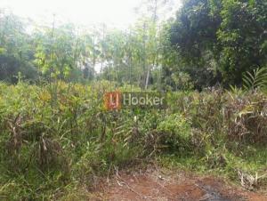 Tanah Dijual Di Desa Kertajaya Rumpin Bogor