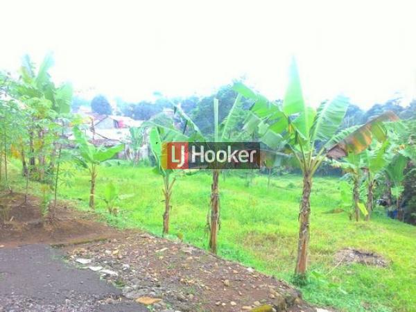 Kavling di daerah sejuk&asri;, cocok untuk villa di Rancamaya, Bogor, Jawa Barat