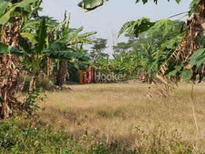 Kavling di LIK Banjardowo