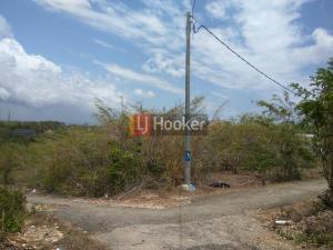 Tanah 600m2 / 6Are (20mx30m) di Jl. Dukuh Sari, Benoa
