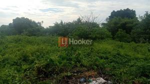 Disewakan tanah 5 are, cocok untuk hunian, villa, area Buduk.