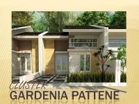 Gardenia Pattene